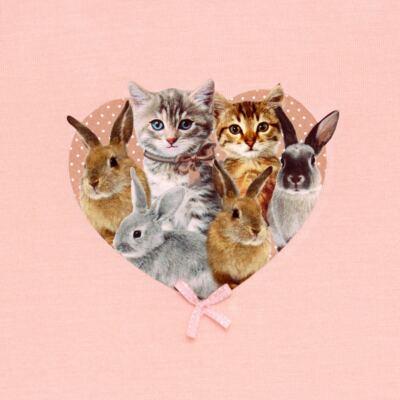 Imagem 3 do produto Regata c/ Shorts em viscolycra Cats & Rabbits - Baby Classic - 331961 CONJ.BLUSINHA C/SHORTS VISCOLYCRA PET PRINT-3