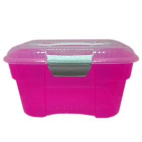 Organizador Plasnorthon Cosmetic Box Pequeno Cores Sortidas