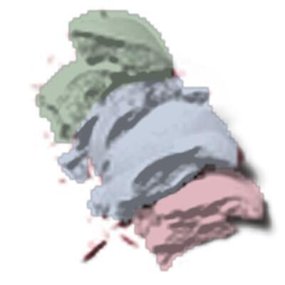 Imagem 3 do produto Luminizing Satin Eye Color Trio Shiseido - Paleta de Sombras - BL215