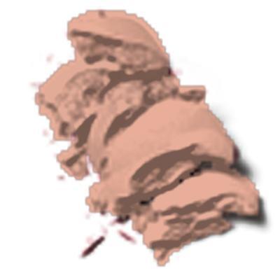 Imagem 3 do produto Powder Blush Revlon - Blush - 007 - Melon - Drama