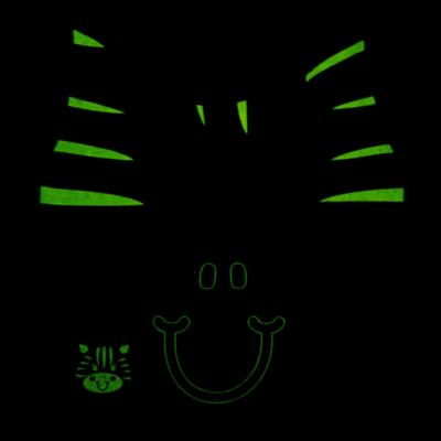 Imagem 5 do produto Pijama longo que Brilha no Escuro Zebrinha - Cara de Criança - L1646 ZEBRA L PJ-LONGO M/MALHA -1