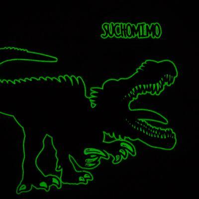 Imagem 5 do produto Pijama longo que Brilha no escuro Dinossauro - Cara de Criança - L2356 DINOSSAURO L PJ-LONGO M/MALHA-3